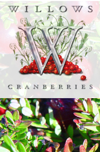 Willows Cranberries logo